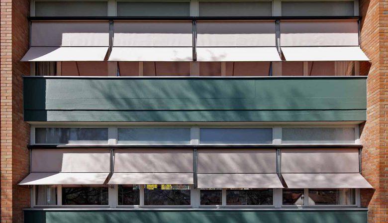 Homepage Projekte FeldliSG Titelbild